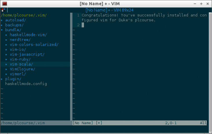 Configured Vim